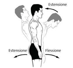 CBT25136IT-extension-flexion-3-286x266.jpg